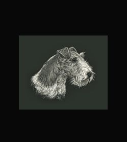 WIRE FOX TERRIER  - This is the actual size of the scratch art. This size is intended as example of a memorial for an urn. Smaller work can easily be done for a pendant or jewellery. A web site dedicated to this is planned. In the mean time I can be contacted at sue@suewalters.com #wirefoxterrier