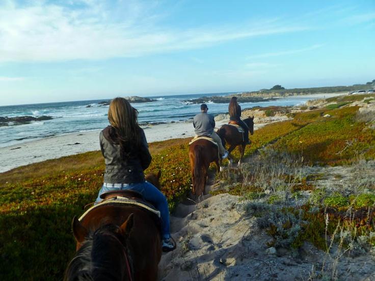 The beautiful trails along the Pebble Beach coastline make a perfect horseback ride.