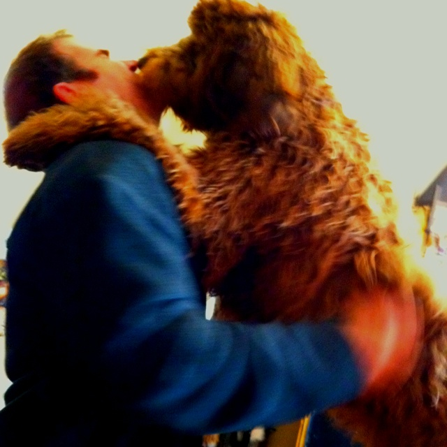 My Anne missed her daddy so she had to give him a big slobber hug!: Big Slobber, Anne Missed, Slobber Hug, Missed Jimmy