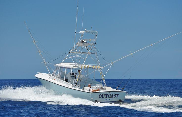99 best jacksonville fl images on pinterest for Deep sea fishing jacksonville fl