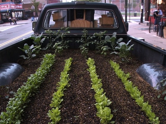 Inspiration - Truck Farm Phoenix- A Mobile Urban Agriculture Project by Good Food Allies (Natalie Morris), via Kickstarter. Truck Farm Phoenix is one in a fleet of mobile farming exhibits based in every urban area in the country teaching kids how fun food is. (Natalie, M. 2011)