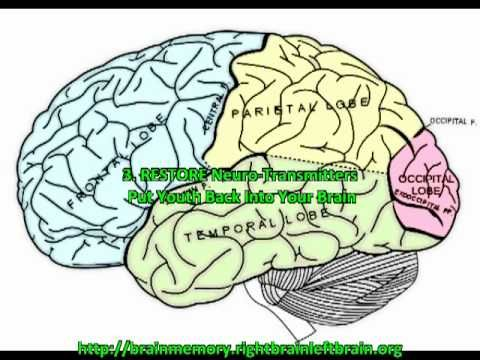 How to improve short term memory and recall