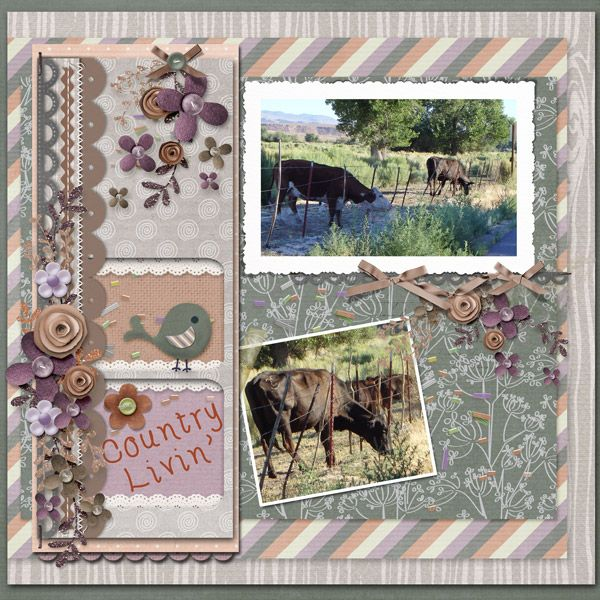 Country Livin' by smikeel. Kit: Country Kife by Meryl Bartho http://scrapbird.com/designers-c-73/k-m-c-73_516/meryl-bartho-c-73_516_522/country-life-kit-p-17917.html One of the Mix and Match products http://scrapbird.com/-c-83/blue-bird-mix-and-match-c-83_562/