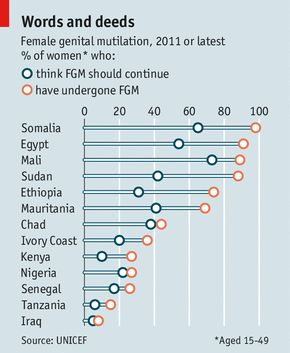 Female Genital Mutilation/Cutting: A statistical overview and exploration of the dynamics of change