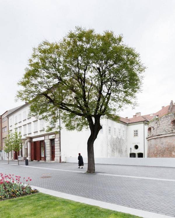 Castle District of Sopron. Photo credit: Danyi Balázs