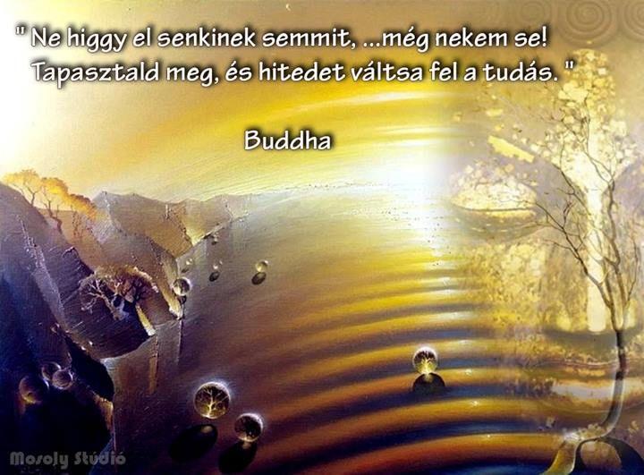 Buddha idézete a hitről. A kép forrása: Mosoly Stúdió