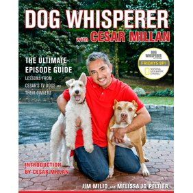 Cesar Takes His Methodology Of People Training And Dog Psychology