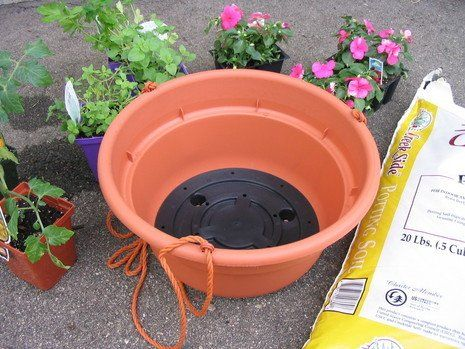 First step of 'how to make an upside down tomato planter'