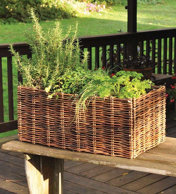 20 best South-facing side garden images on Pinterest ...