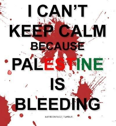 Anyone knows about the history of Palestine to help me with my dissertation?
