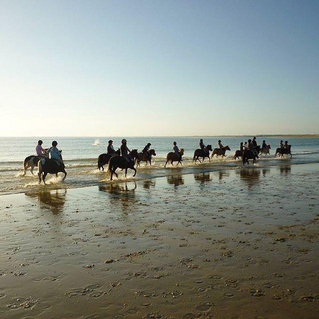 Qui n'a jamais rêvé d'une balade à cheval sur la plage ?