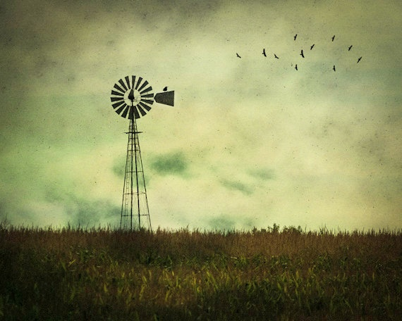 Country Windmill Photograph, Home Decor, Vintage,  Back to Nature, Wall Art, Farm, Rural, Flock of Birds. $30.00, via Etsy.