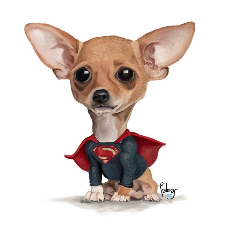 #Perro #Chiguagua #Super #cartoon