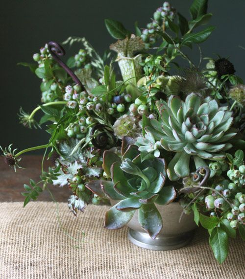 """Heat Proof Flowers"" blueberry, scabiosa buds and pods, fiddleheads, jasmine vine, pulsatilla."