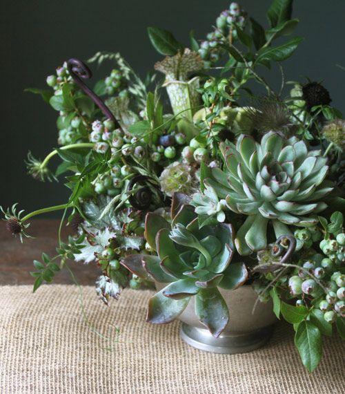 Succulent and blueberry centerpiece: #centerpiece #succulent