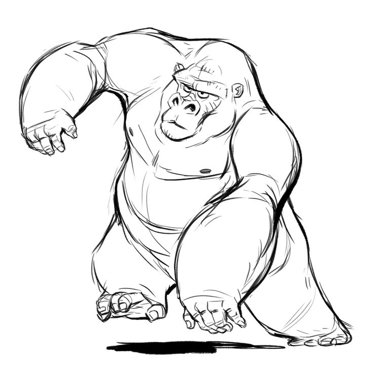 Gorilla Simple Sketch Silverback gorilla studies ...