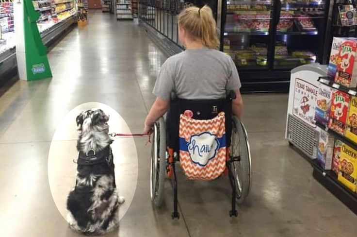"""The 16-year-old from Dallas, TXrelies on the help of her servicedog, Flynn. According to Fetching Apparel, Hailey was once a dancer on the varsity drill team, student council member, violinist and at the top of her class. However, with her conditions progressing, Hailey can only take classes online. She is dependent on her parents, nurse, medications, and Flynn. The condition she grapples with the most is epilepsy, which causes seizures. """"To get a service dog you must be disabled to the…"""