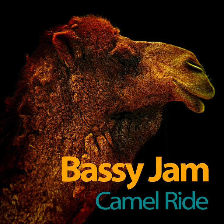 CAMEL RIDE - EP Available on iTunes https://itunes.apple.com/album/camel-ride-ep/id1044756304