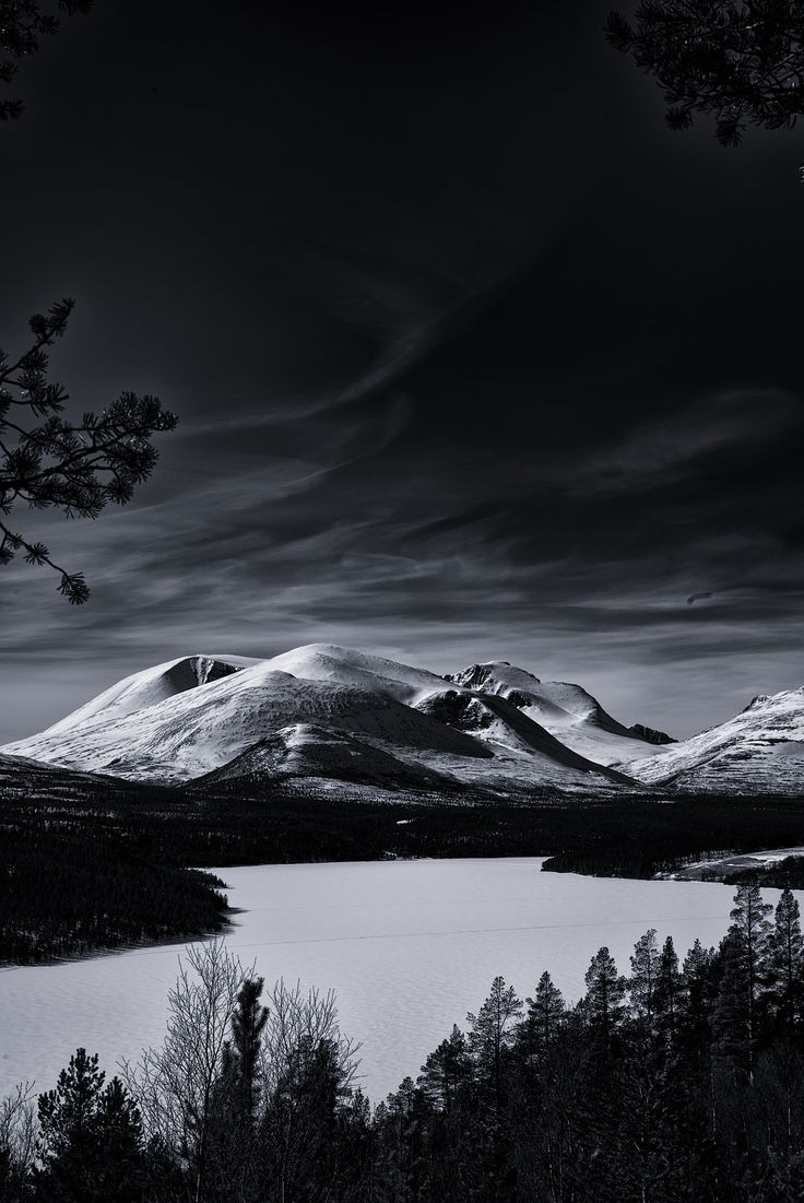 Raw Strength by Vinni  Vigdal on 500px
