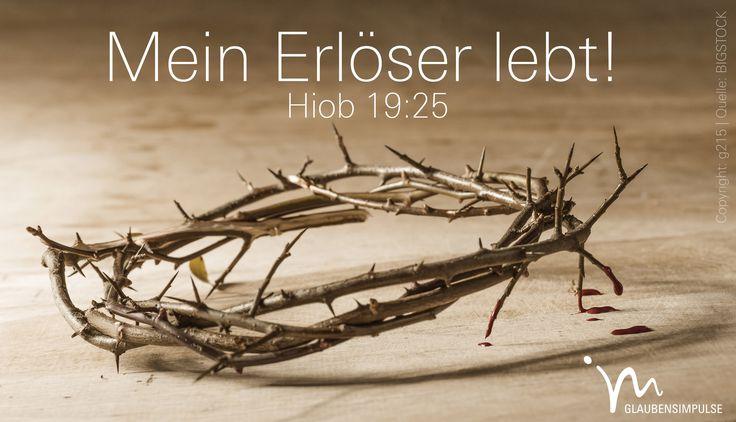 """""""Doch eines #weiß ich: #Mein #Erlöser #lebt; auf dieser #todgeweihten #Erde #spricht er das #letzte #Wort!"""" #Hiob 19:25 #glaubensimpulse"""