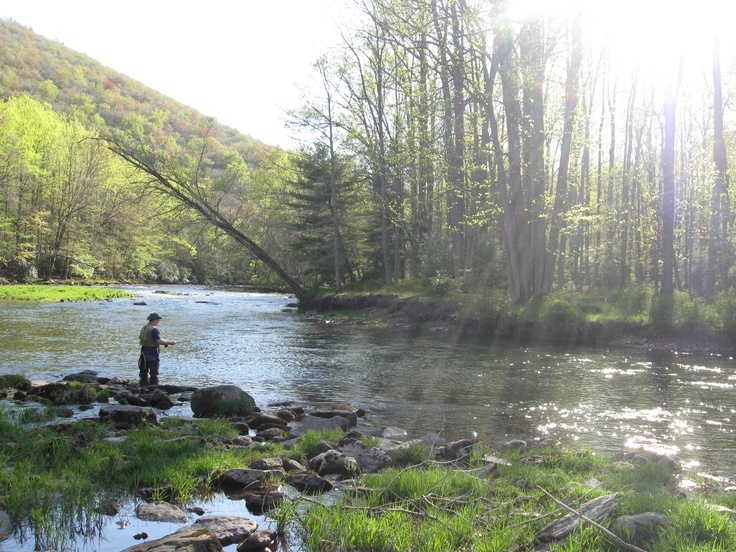 27 best penns creek images on pinterest fishing fly for Trout fishing pa