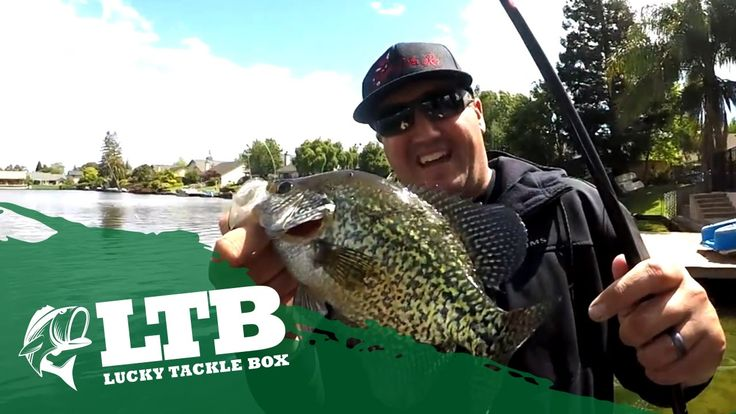 Nick, the Informative Fisherman, breaks down the March Panfish Box to show you how to catch Crappie, Bluegill, Perch and all other Panfish!