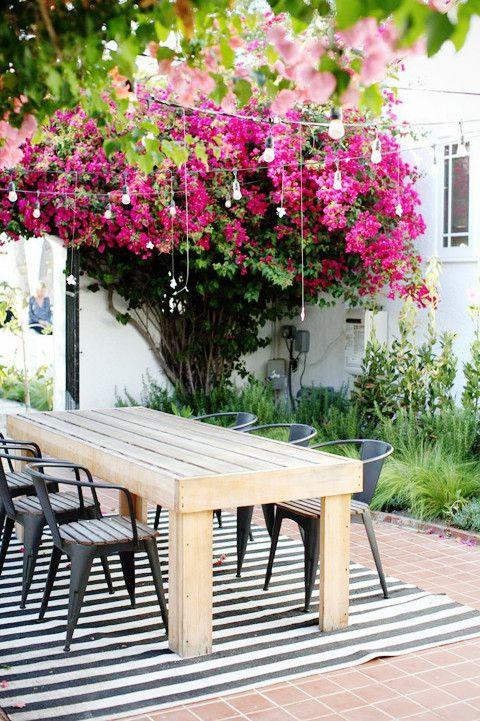Outdoor Oasis   lark & linen