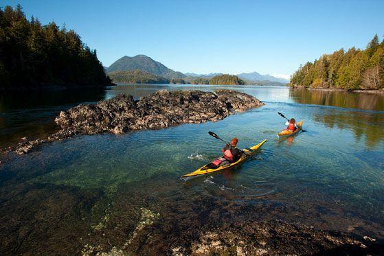 Tofino Sea Kayaking Company - Kayaking on Vancouver Island BC