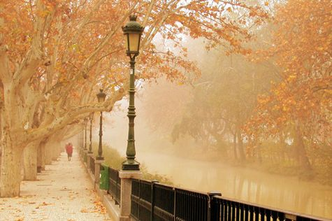 Paris in the fall ~ ♥