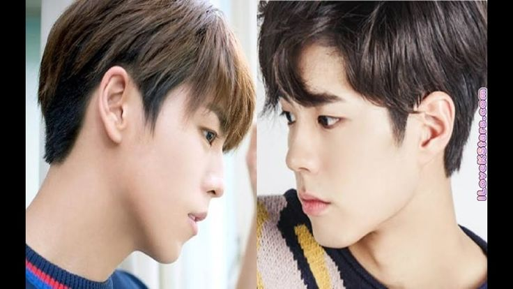 12 Korean Celebrities who could pass as twins