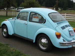 1974 VW Super Beetle.  My 2nd car, but it was ORANGE.  Oh the fun times we had in that cute little pumpkin car!