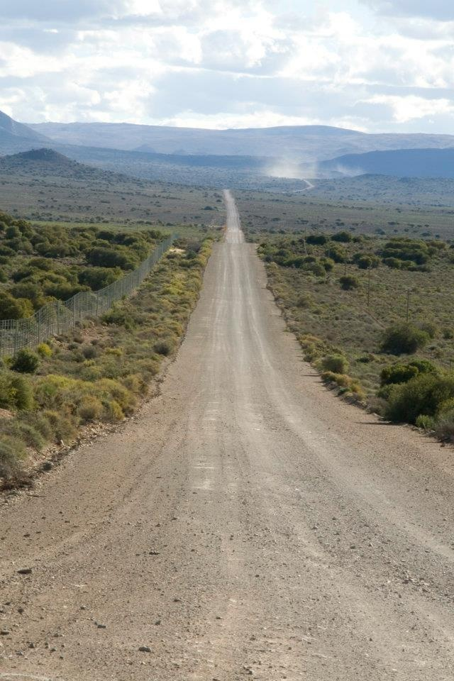 Miles and miles of sweet blow all or so it seems if you disregard the vignettes of incredible scenery and the bossies (bushes) and birds .... that's the South African Karoo