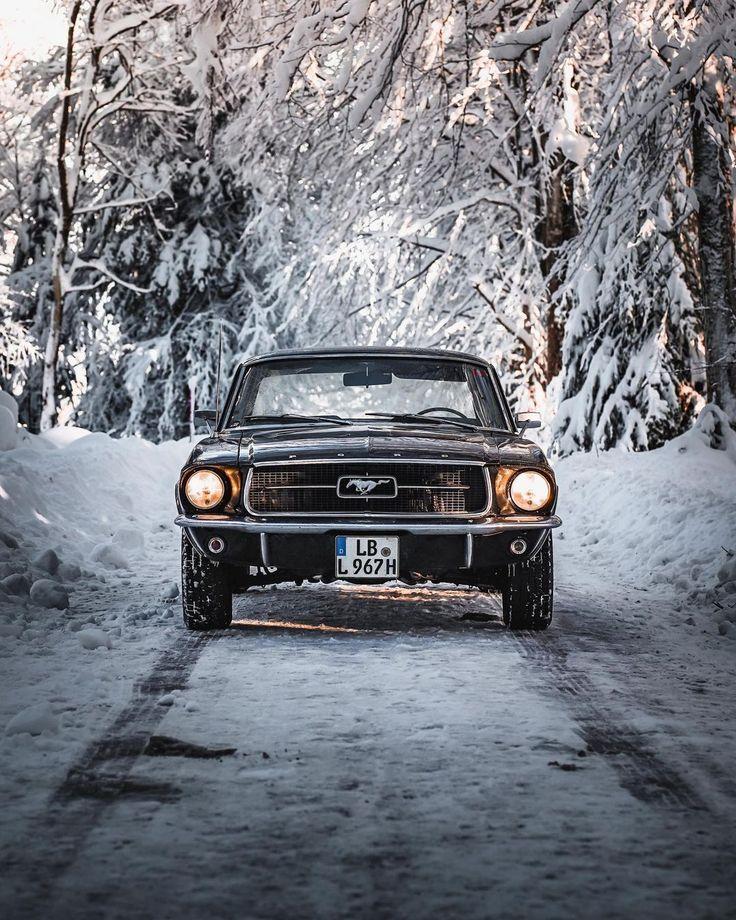 Ford Mustang 1967, Mustang Fastback, Mustang Cars, Black Widow Drawing, Classy People, Car Memes, Cool Wallpaper, Iphone Wallpaper, Benz Car