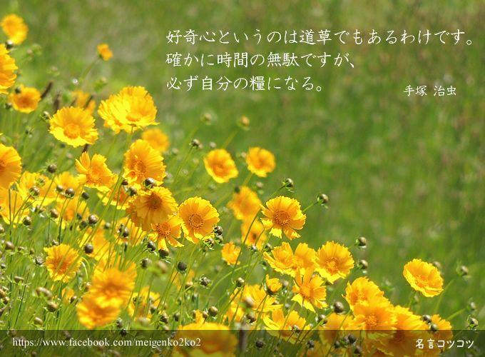 好奇心というのは道草でもあるわけです。 確かに時間の無駄ですが、必ず自分の糧になる。 手塚 治虫