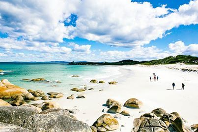 The four-day Bay of Fires Lodge Walk stretches 23 kms through the untouched surroundings of Mt William National Park in Tasmania's far north-east corner.  Photo: Elise Hassey | Australian Traveller Magazine