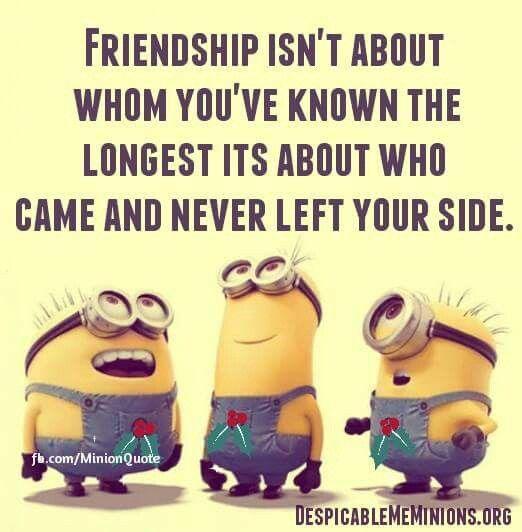 One true, true friend is worth more than 100 casual friends.