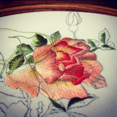 Rose#wesołaTwórczość#LubieRóże#Haftujemy#embroidery#handmade