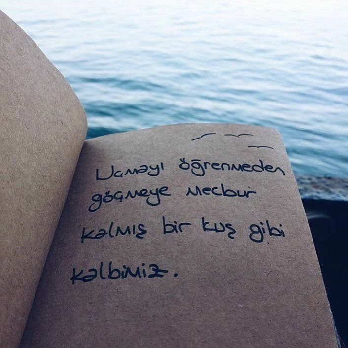 """6,256 Beğenme, 12 Yorum - Instagram'da Kitap Kulübü (@kitapklubu): """"#cahitzarifoğlu"""""""