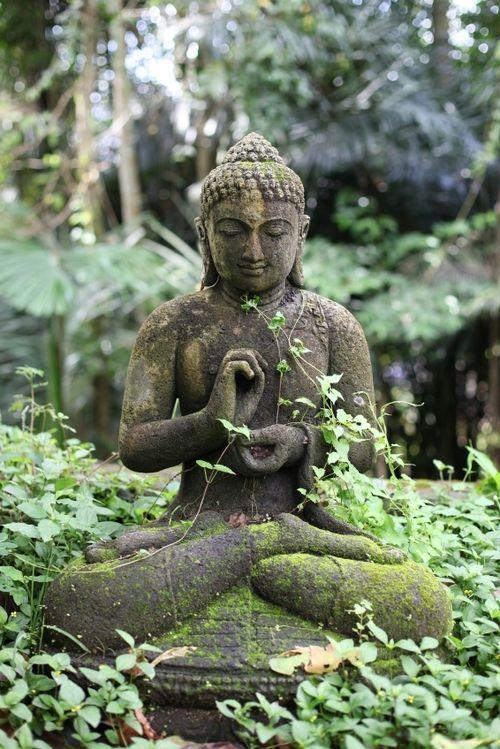 Je me demande si je vais laisser la mousse recouvrir la statue de Bouddha que je veux placer dans le jardin, c'est très humide, entre les roches polies par l'eau, contre un arbre immense avec des racines noueuses, en aval des pieds de Jamalak. Le soucis repose sur la crue...