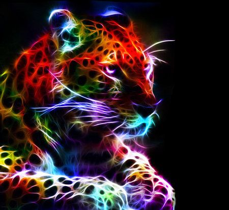 Beautiful and Colorful Fractal Leopard -