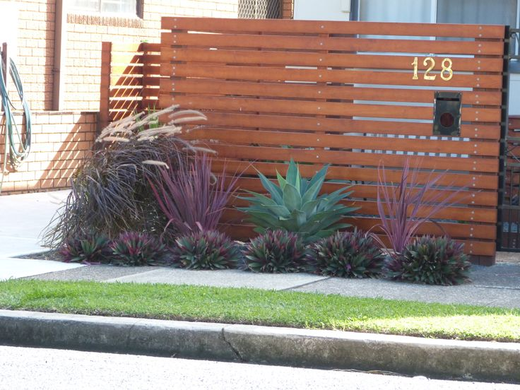 Simple Australian landscaping ideas using Agave, white rocks and red and purple ornamental grasses for edging.