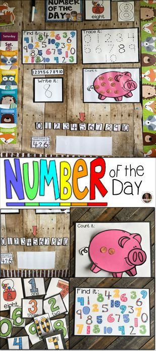 Number of the day was designed to be a part of your daily morning meeting or carpet time for preschool and kindergarten leveled children. Number of the day is a great introduction and/or review activity to learn about numbers.