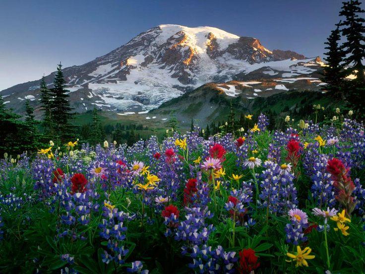 Volcán y sus colores