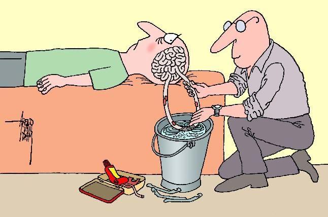 Google Afbeeldingen resultaat voor http://www.edtmaastricht.nl/hersenkronkeltherapeut.jpg