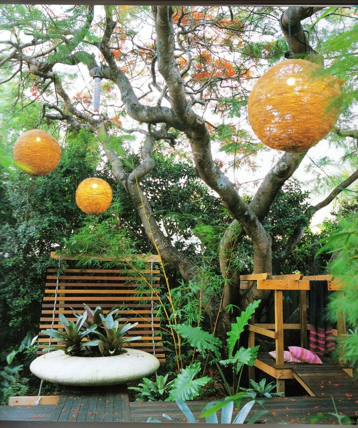 98 best florida garden and ideas images on Pinterest Gardening