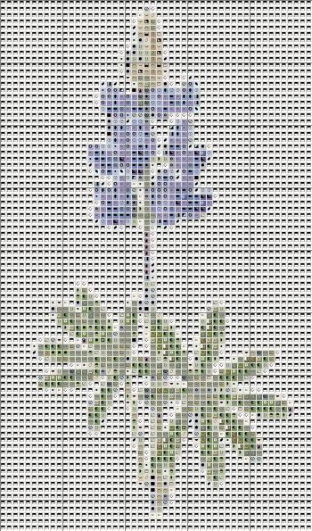 Best Cross Stitch Across Texas Images On   Punto