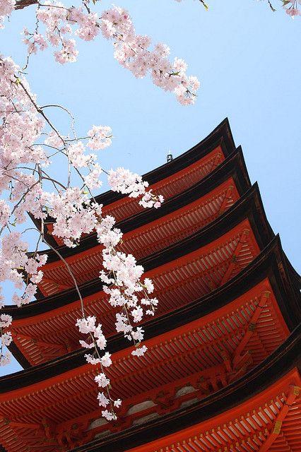 Cherry Blossoms and Pagoda in Itsukushima Shrine, Hiroshima, Japan