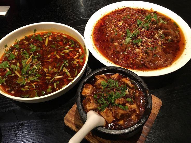 Chengdu spicy 麻辣 flavor:  Fu Qi Fei Pian (beef slices in chili sauce) 夫妻肺片, spicy braised fish 水煮鱼, mapo tofu 麻婆豆腐