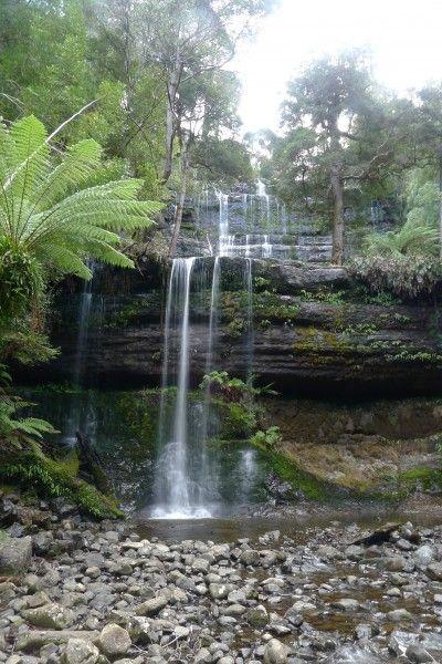 Tasmanian Waterfalls - Russell Falls