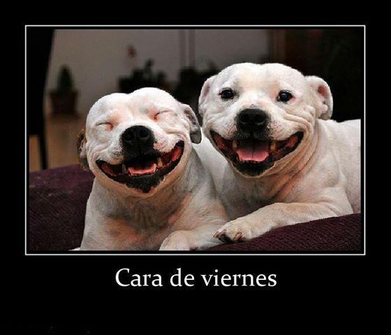 Hay sonrisas los viernes :) comparte la tuya también